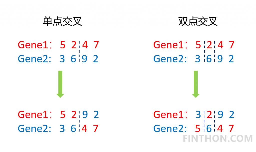 《Python手把手构建遗传算法(GA)实现最优化搜索》